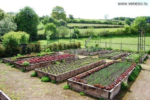 Забор огород