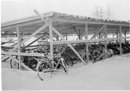 Велосипеды (1) (500x353, 29Kb)