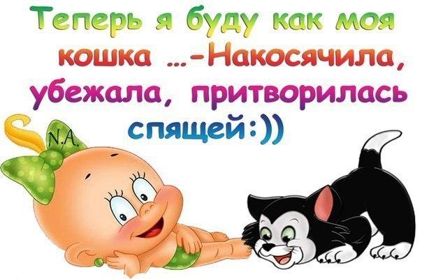 3821971_koshka (604x400, 53Kb)
