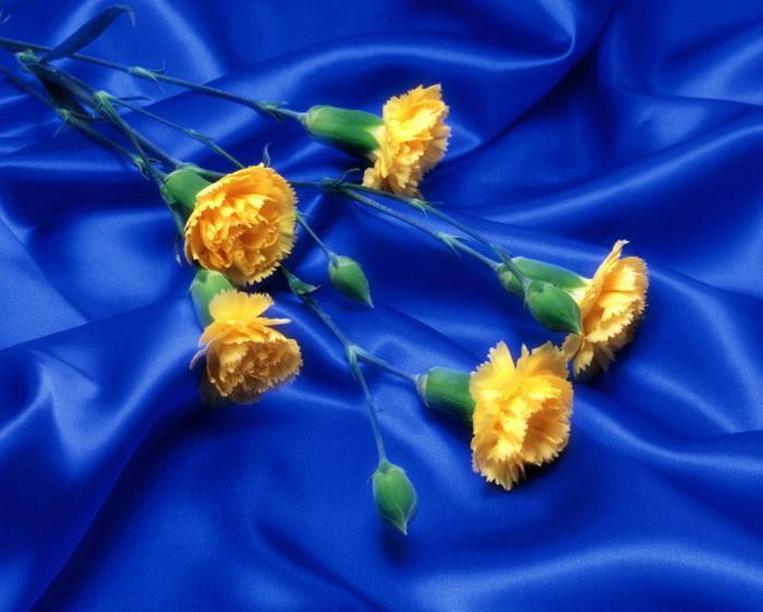 """190x143 крестов * 48 цветов * Теги: цветы.  Предпросмотр.  Схемы автора  """"carit """"."""