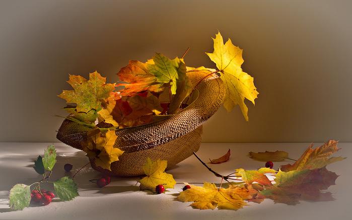 осень в шляпе (700x437, 131Kb)