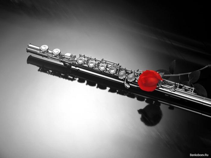 1296741990_bankoboev.ru_red_rose_flute (700x525, 142Kb)
