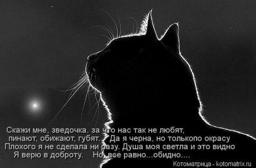 4208855_4_1_ (500x329, 29Kb)