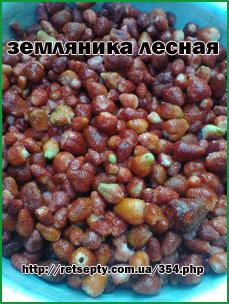 liv_zemlyanika (229x304, 99Kb)