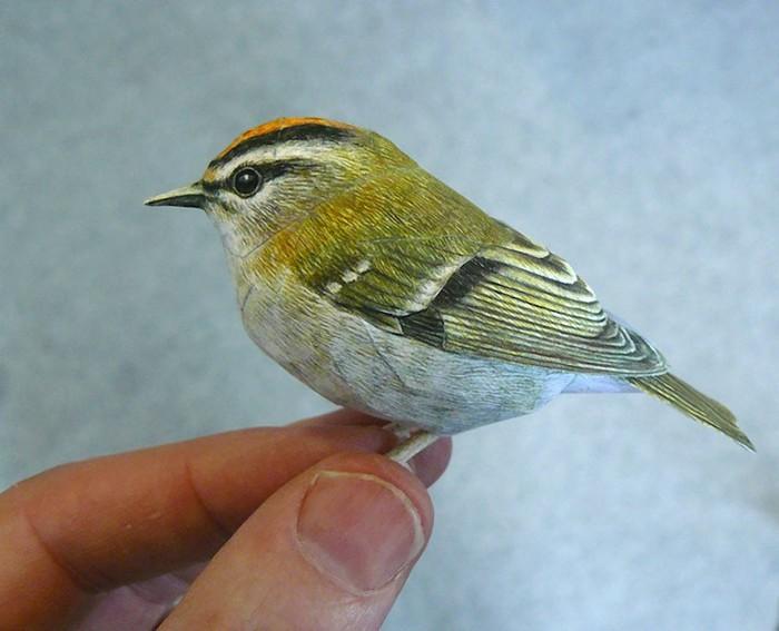 Bird-2 (700x567, 74Kb)