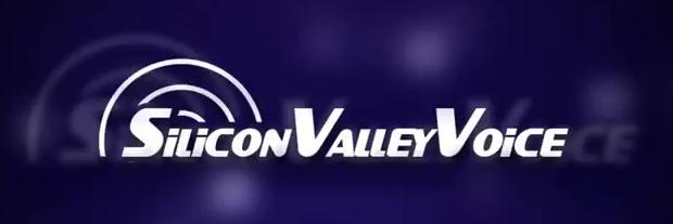 4347790_silliconvalleyvoice (620x207, 85Kb)