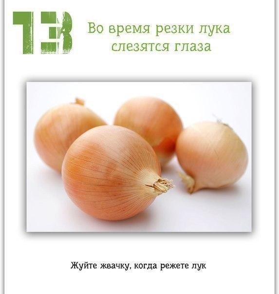 13 (573x604, 38Kb)