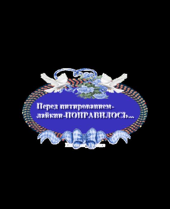 ДЛЯ КОММЕНТОВ (568x700, 162Kb)