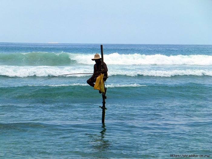 рыбак на Шрри-Ланке (700x525, 228Kb)