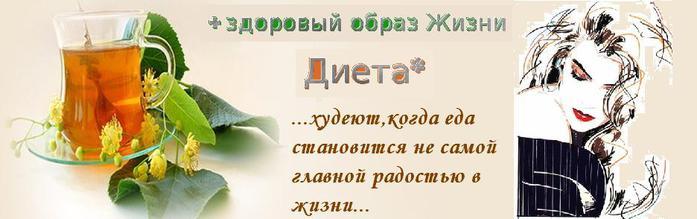 банер ДИЕТА (700x219, 29Kb)