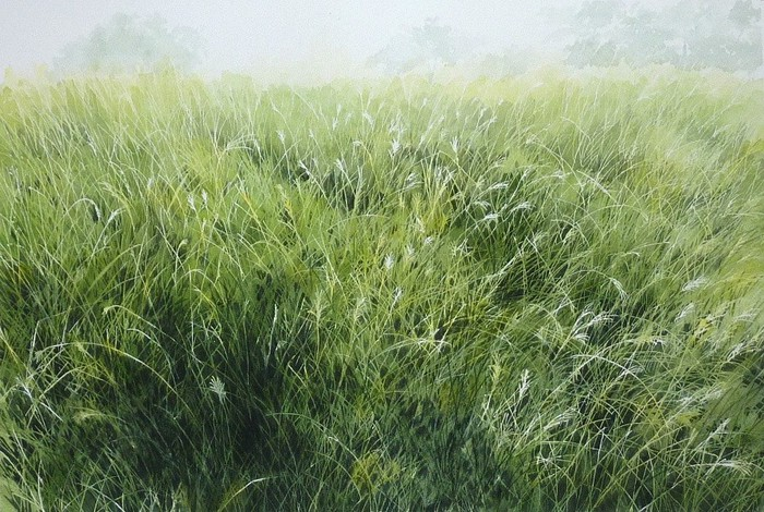 abe-toshiyuki-草の香り-30-45cm-watercolor-on-arches-2013 (700x470, 145Kb)