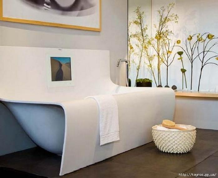Необычный дизайн интерьера ванных 22 (700x570, 197Kb)