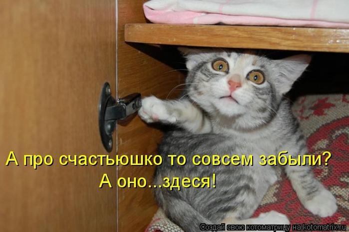 kotomatritsa_U0 (700x464, 202Kb)