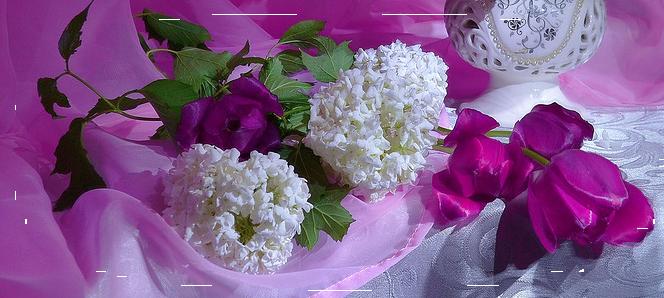 4360286_0_cb136_18e9999d_XLkopiya (664x298, 460Kb)