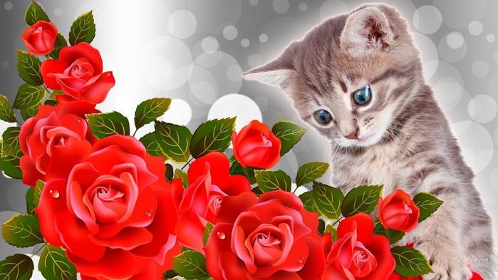 Котик с цветами картинки 7