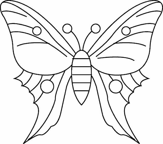 butterfly3 (641x565, 101Kb)