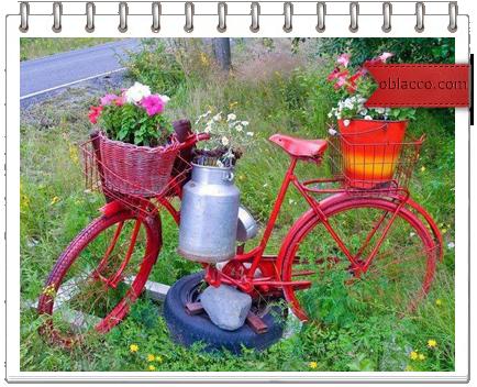 И веселюсь!  Оригинальное сообщение.  Идеи для дачи, велосипеда и похудения).  НебоОблака.  Это цитата сообщения.