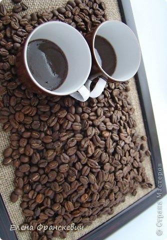 сова из кофейных зерен (4) (334x480, 113Kb)