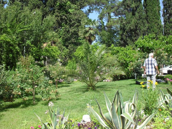 Филиал райского сада (605x454, 158Kb)