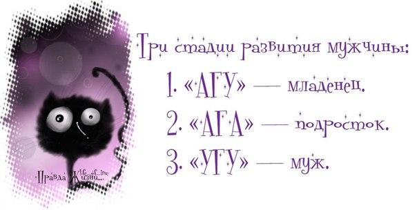 4234487_20 (604x304, 32Kb)