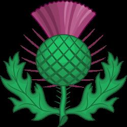 Scottish_Thistle_(Heraldry).svg (250x250, 52Kb)