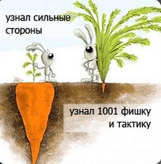 4107848_morkovka (315x320, 180Kb)