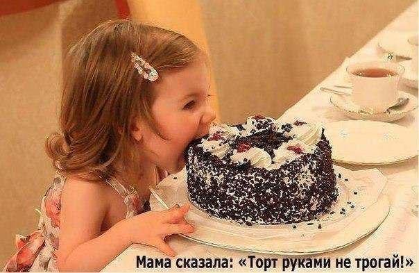 торт шоколадный- (604x393, 240Kb)