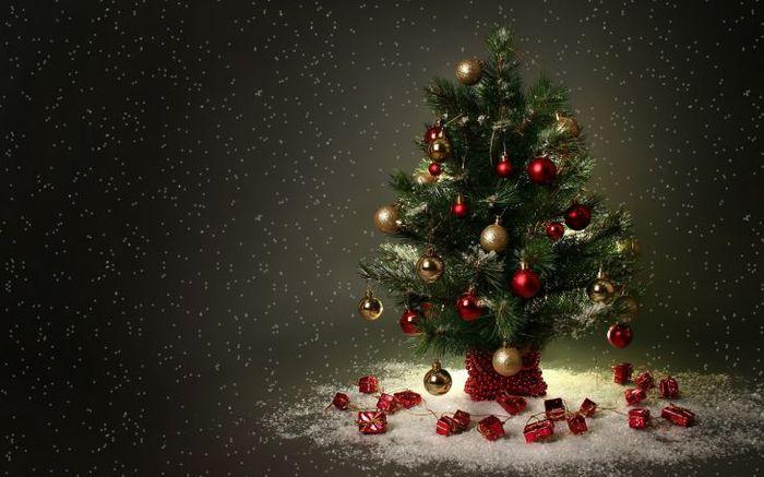 маленькая новогодняя елочка/1371794958_1354771339_wwwradionetplusru_151 (700x437, 52Kb)