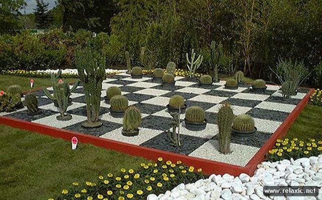 Интересные идеи для ландшафтного дизайна сада фото
