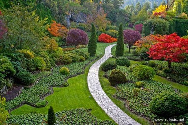 garden_005 (640x426, 321Kb)