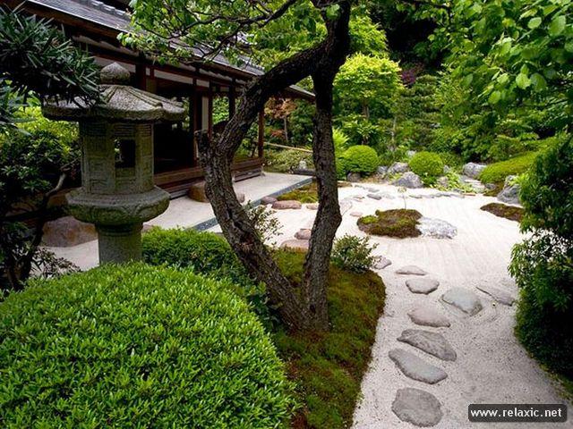 garden_023 (640x480, 417Kb)