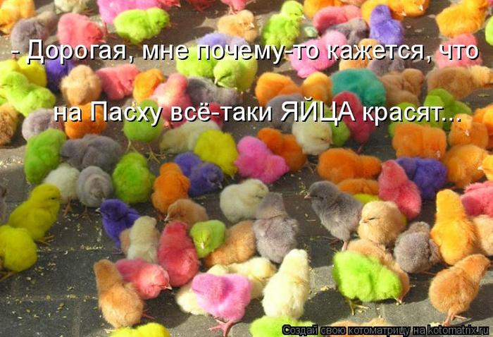 1372055919_101969966_large_451638 (700x478, 415Kb)