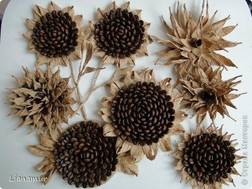 цветы из кофе и шпагата (2) (520x390, 149Kb)