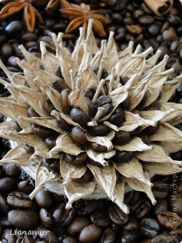 цветы из кофе и шпагата (46) (360x480, 124Kb)