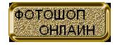 кнопка золотая (170x70, 15Kb)