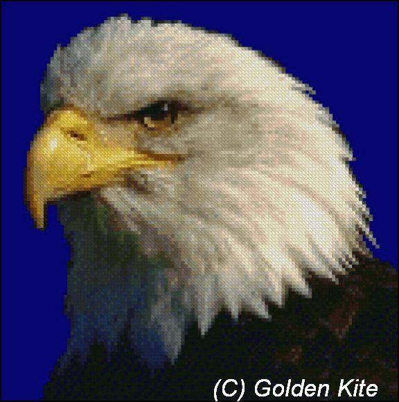 104 Eagle (576x580, 55Kb)