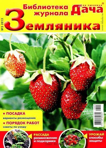 BiMLD313_Jurnalik.Ru_1 (402x563, 197Kb)