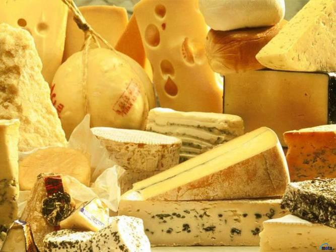 Анализ рынка сыров в России/4981504_sir (667x500, 47Kb)