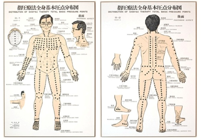 Acupuncture Pressure Points Chart