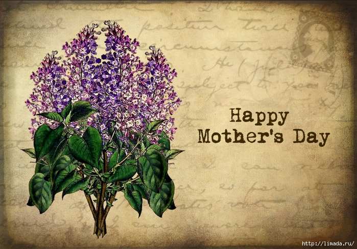 mothers day lilac (700x489, 347Kb)