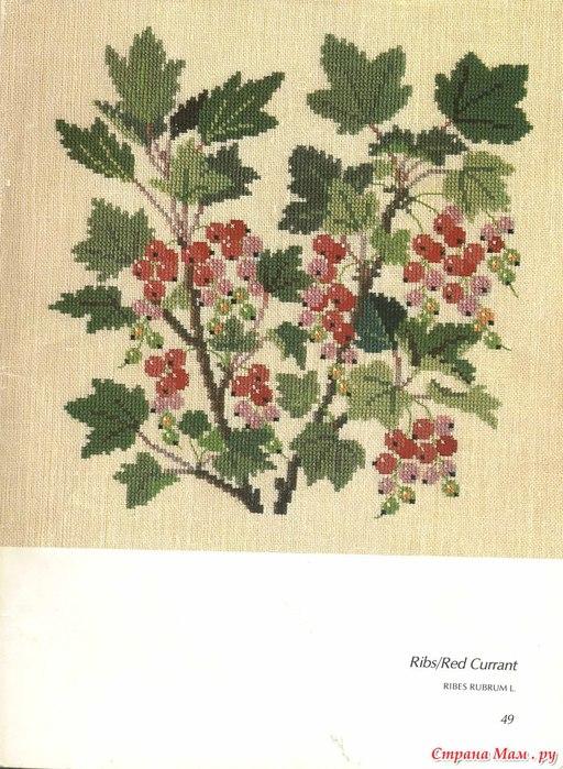 Растения(вышивка крестом