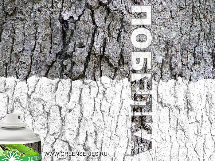 зеленая серия аэрозоль, зеленая серия купить, аэрозоли зеленая серия, подбелка деревьев, дизайнер зеленая серия, дизайн побелка, побелка дизайн, макет зеленая серия, кто делал дизайн для зеленой серии, кто делал логотип для зеленой серии/1372484855_Pobelka_0010_01_01 (700x525, 285Kb)