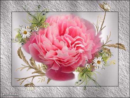 Пион-розовый (450x338, 316Kb)