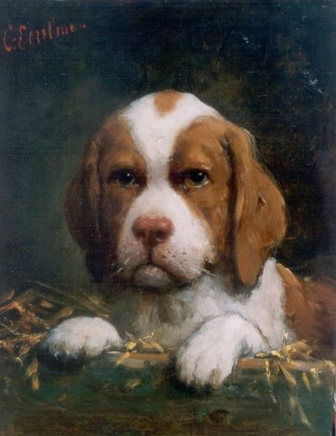 A puppy (485x630, 174Kb)
