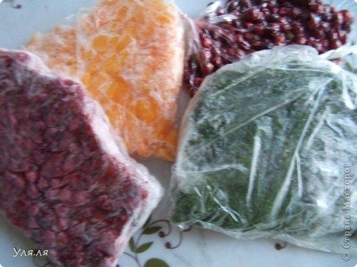 Отличный способ замораживания на зиму ягод, фруктов и овощей (9) (520x390, 114Kb)