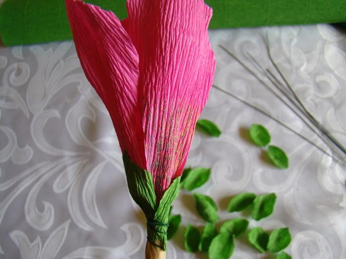 Фрезия из гофрированной бумаги. Фото мастер-класс (19) (700x525, 236Kb)