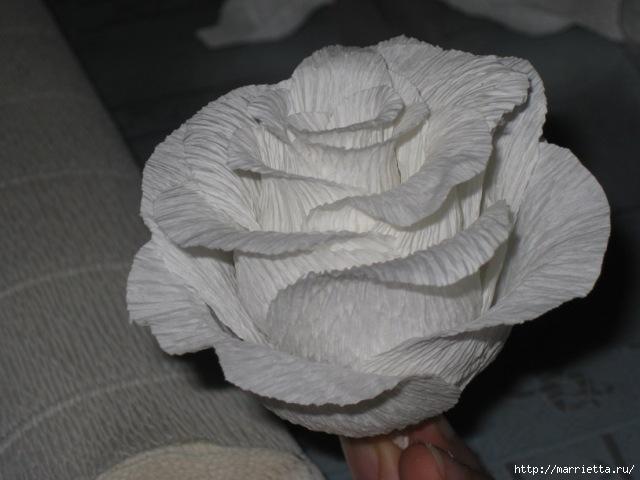 Розы из гофрированной бумаги своими руками с пошаговым фото