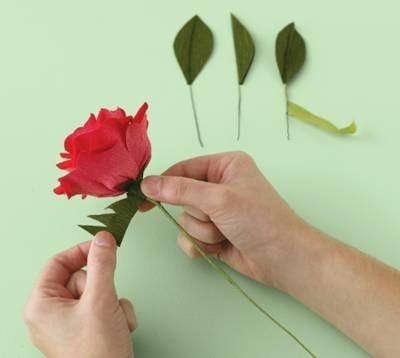 Очень красивые розы из гофрированной бумаги (21) (400x358, 34Kb)