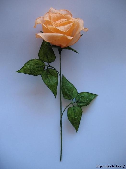 Очень красивые розы из гофрированной бумаги (27) (525x700, 189Kb)