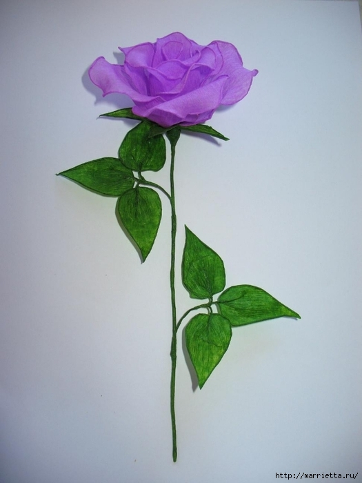 Очень красивые розы из гофрированной бумаги (28) (525x700, 167Kb)